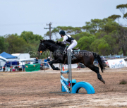 horse-DC-0001-20210411-DSC06727