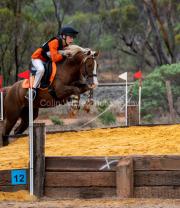 horse-DC-0075-20210411-_A7R0358