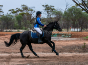 horse-DC-0081-20210411-DSC07117