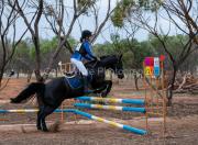 horse-DC-0082-20210411-DSC07122