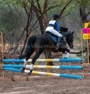 horse-DC-0137-20210411-_A7R0649