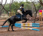 horse-DC-0183-20210411-_A7R1232