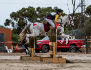 horse-CW-0326-_CLW6933