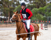 horse-CW-0356-_CLW6998