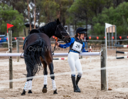 horse-CW-0417-_CLW7183