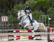 horse-CW-0465-_CLW7260