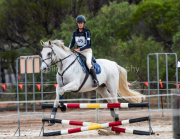 horse-CW-0466-_CLW7261