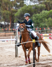 horse-CW-0544-_CLW7315