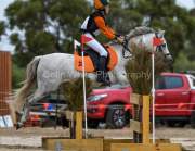 horse-CW-0612-_CLW9120