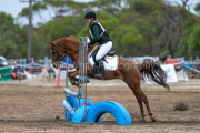 horse-CW-0616-_CLW9124