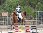 horse-CW-0621-_CLW9131