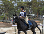 horse-CW-0636-_CLW9174