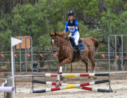 horse-CW-0657-_CLW9228