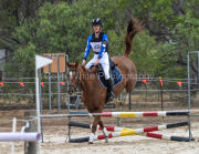 horse-CW-0658-_CLW9229