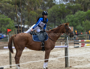 horse-CW-0659-_CLW9233