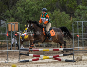 horse-CW-0671-_CLW9269