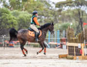 horse-CW-0682-_CLW7436