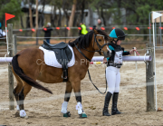 horse-CW-0740-_CLW9448