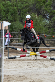 horse-CW-0769-_CLW9529