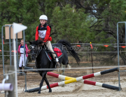 horse-CW-0770-_CLW9530