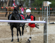 horse-CW-0771-_CLW9532