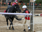 horse-CW-0772-_CLW9533
