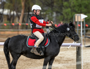 horse-CW-0773-_CLW9534
