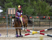 horse-CW-0820-_CLW9659