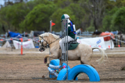 horse-CW-0875-_CLW9814