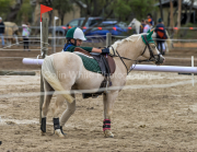 horse-CW-0902-_CLW9892