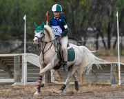 horse-CW-0912-_CLW9920