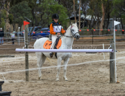 horse-CW-0920-_CLW9948