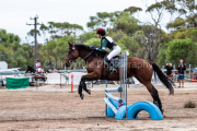 horse-CW-0222-_CLW6729