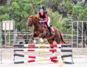 horse-CW-0247-_CLW6783