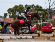 horse-CW-0264-_CLW6816