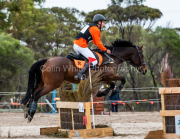 horse-CW-0281-_CLW6843