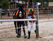 horse-CW-0294-_CLW6861